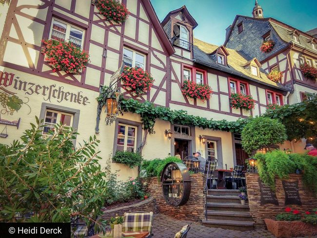 Beilstein Beilstein Mosel Beilstein Moselle Germany GERMANY🇩🇪DEUTSCHERLAND@ Weekend Enjoying Life Flower Tree Architecture Building Exterior Sky Built Structure Plant Potted Plant