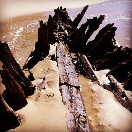 Buster Beach Surf Igers instagood picoftheday winter woolgoolga