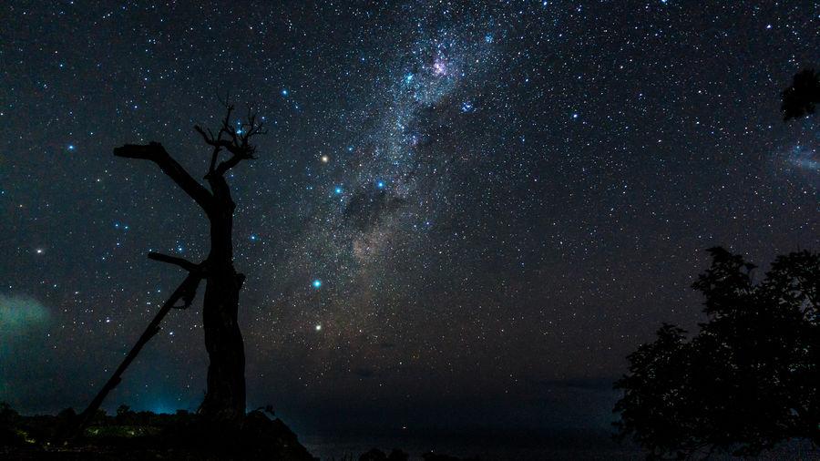 Stars over Nusa