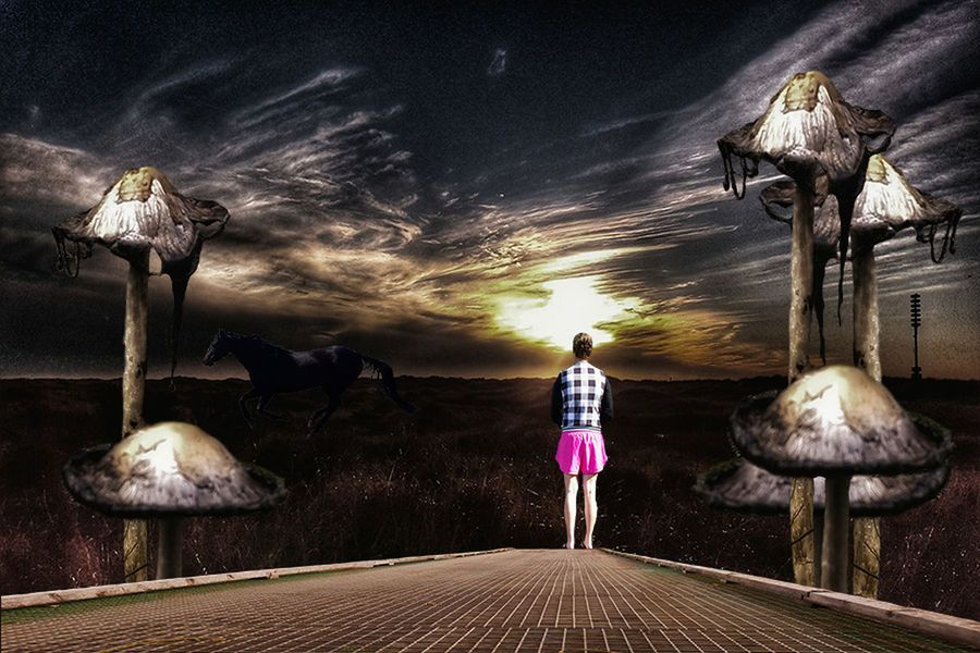 Lost Adventure Another Place Check This Out Clouds Clouds And Sky Dark Darkness Darkness And Light Digital Art Edit EyeEm Best Edits Fantasy Fantasy Edits Girl Horse Journey Landscape Lost Lostplaces Mushroom Mushrooms Nature Notes From The Underground Photo Manipulation Speed