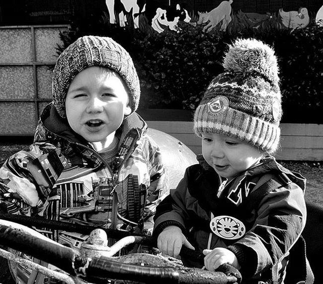 Day out @pennywellfarm Pennywellfarm Pennywell Farm Sons Boys LoveThem  Blackandwhitephotography Blackandwhite Bandwphotography Photography Nikon Nikond3200 Nikonphotography Amaturephotography Photographyislifee Lifethroughalens Familyday DaddysBoys