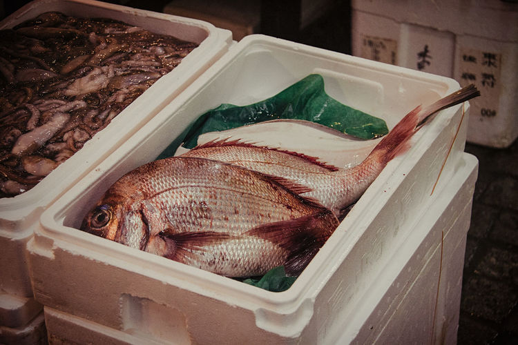 Box Market Close-up Day Delicious Fish FishMarket Food Food And Drink Freshcatch Freshness Healthy Eating High Angle View Indoors  No People Raw Food Seafood