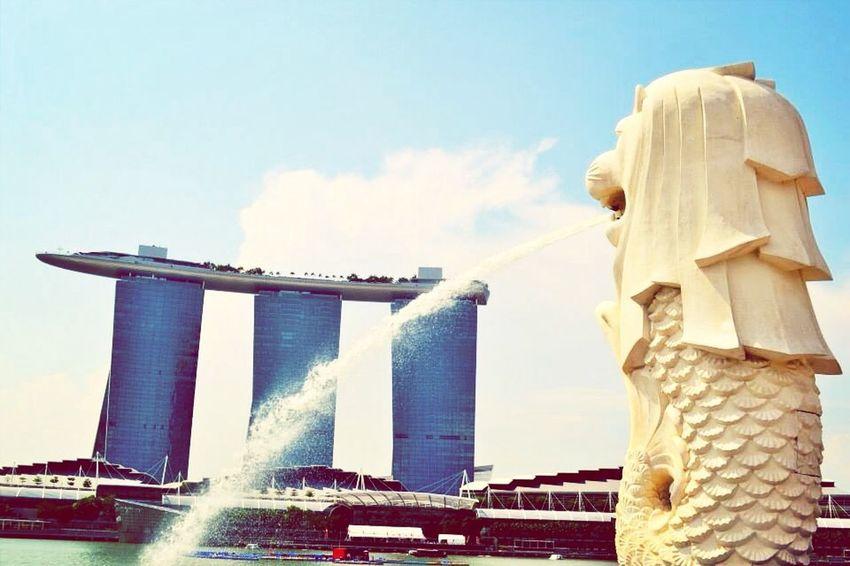 Singapore bei bestem Wetter genießen!