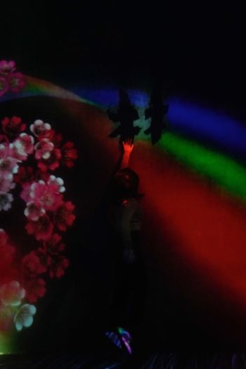 High angle view of people on red flowering plant