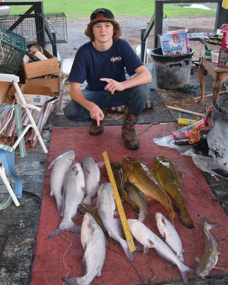 Life in Alabama. Tornadoes in the morning - Cat-Fishing in the afternoon. Today's catch Jan 21, 2017 Akabama Calfing Catfish Fish Fishing Food Freshness Healthy Eating High Angle View One Person Outdoors Raw Food