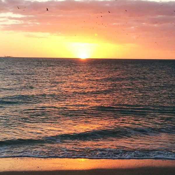Sunset Sea Orange Color Tranquility Beauty In Nature Outdoors Romantic Sky No People Multi Colored Sky Beach Vacations