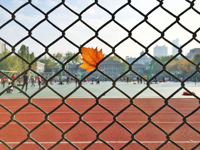 Sports track seen through chainlink fence