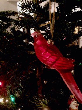 Merry Christmas Bisschenurlaubamweihnachtsbaum