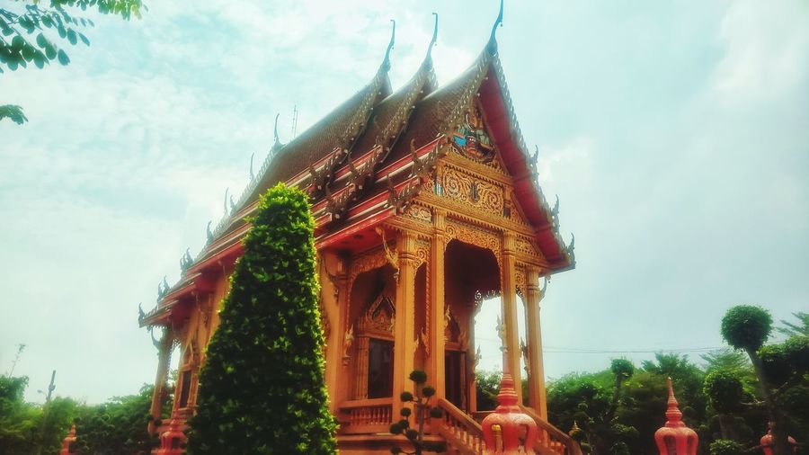 The elegance of Thai tample Landscape Nature Tample Thai Tample Travel Travel Thailand Beautiful Tample Day Tree Sky Outdoors Architecture Landmark