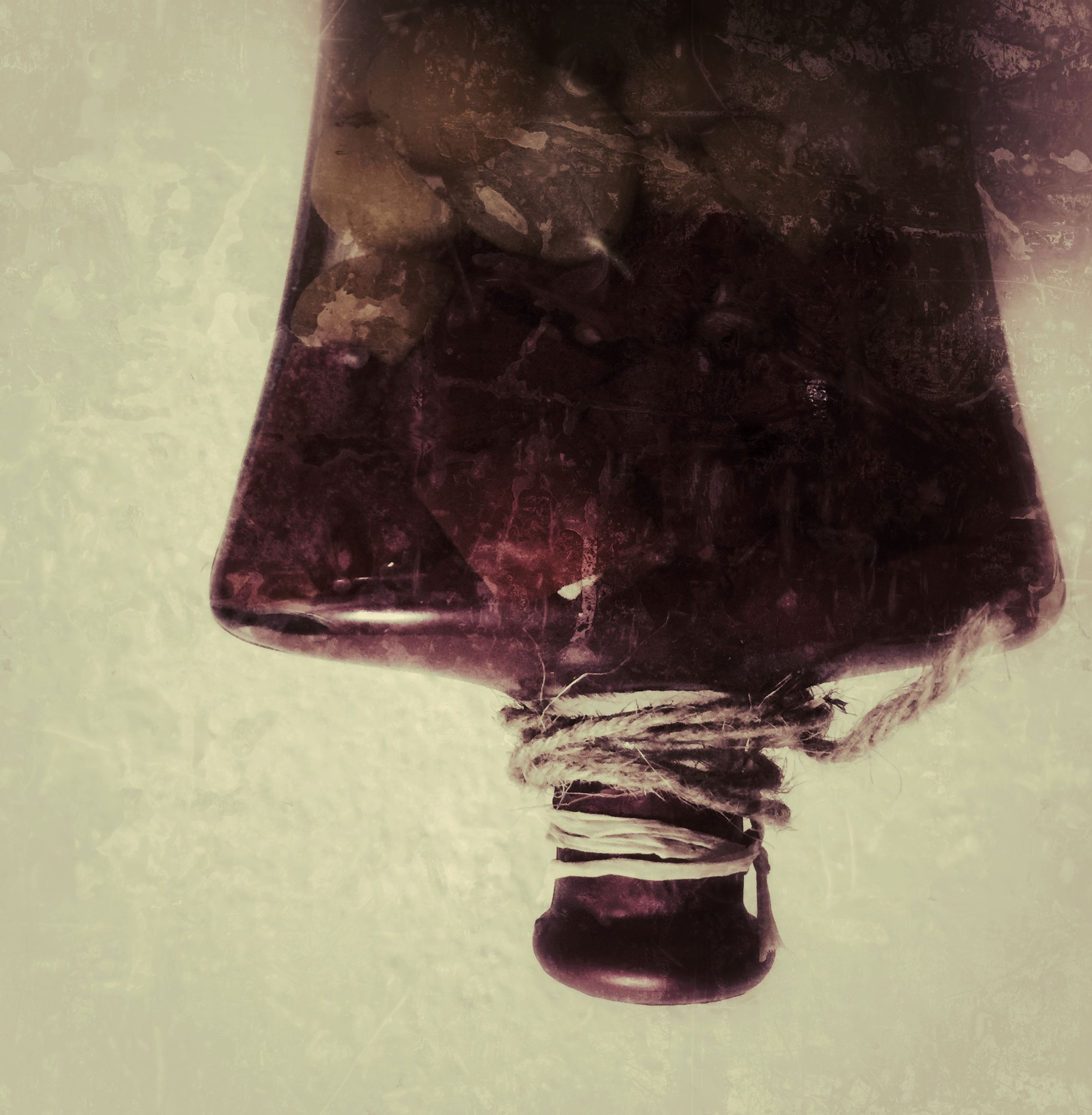 indoors, close-up, still life, high angle view, no people, table, wall - building feature, reflection, death, dead animal, water, day, hanging, cold temperature, nature, animal themes, glass - material, animal representation, art and craft