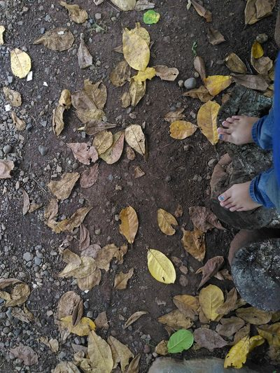Hello World That's Me Feet Myland  Justshoot Just Shoot.. Taking Photos for EyeEm Gallery EyeCollection