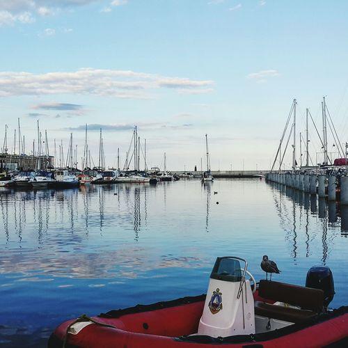 Gdynia Nautical Vessel Harbor Sky Reflection Water Sea Transportation Sailboat Outdoors Day Yacht Yacht Life Gdynia Poland Phone Photography