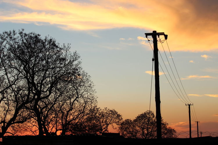 Silhouette trees by electric poles against sky during sunset