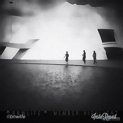 Bnw_life_invite Bnwlife_member