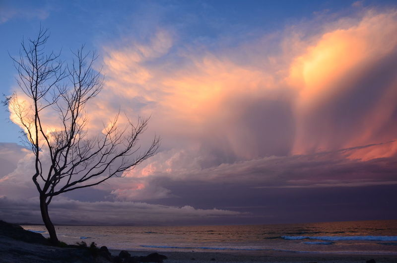 Beach Beach Sunset Beauty In Nature Bryon Bay Byron Bay Cloud - Sky Clouds By Jj Dramatic Sky Landscape Nature No People Outdoors Scenics Sea Sky Sunset Tranquility Tree Tree Sunset