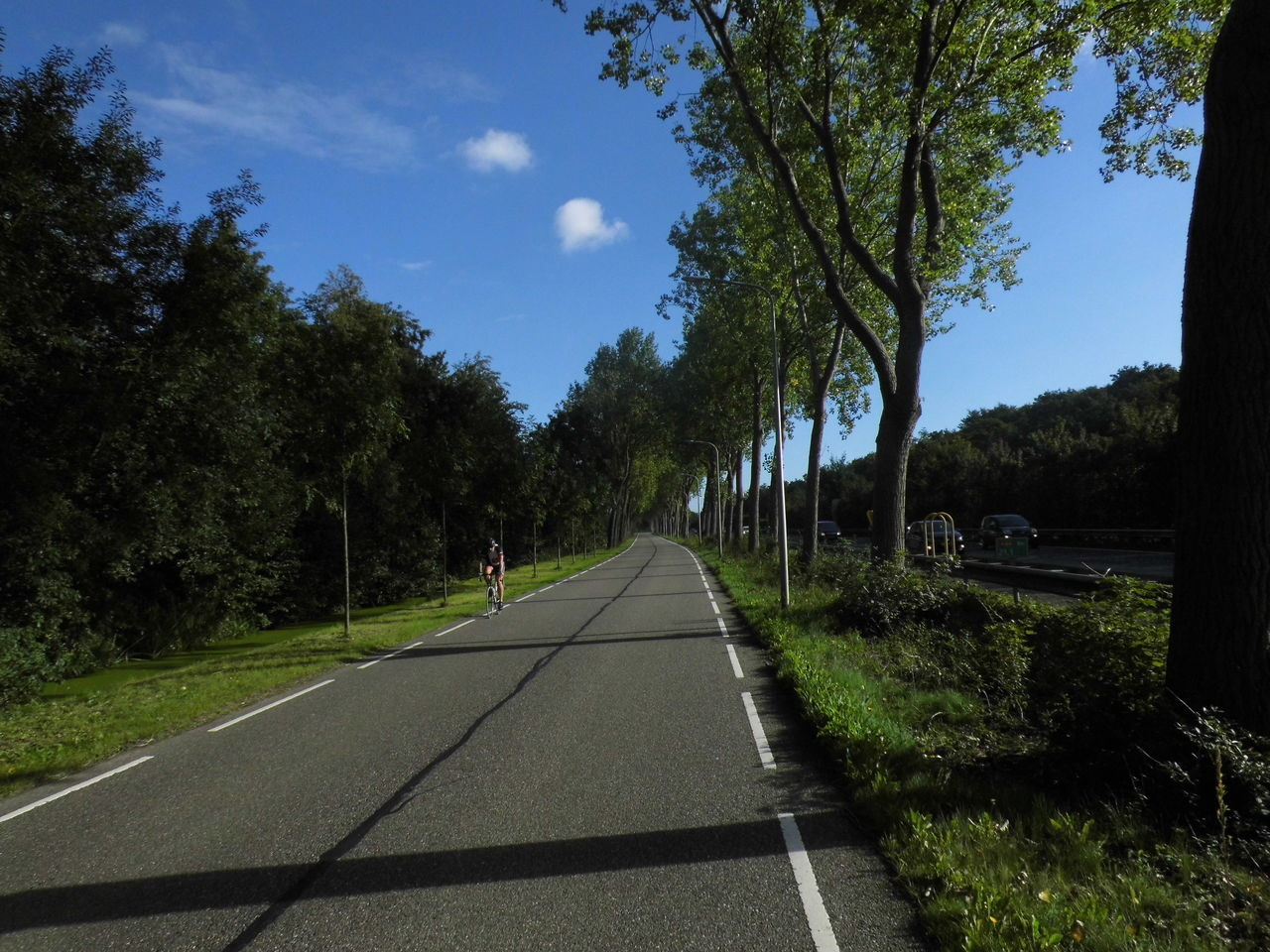 Man Cycling On Road Amidst Trees Against Sky