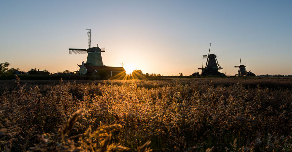 Traditional windmills on field against clear sky during sunset
