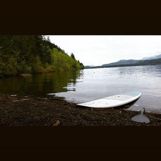 Only way to relax on a sunday is to hit the lake Cultus Cultuslake Sup Stand_up_paddle  Paddleboard Paddle Standuppaddle Explorebc Beautifulbritishcolumbia Explorecanada