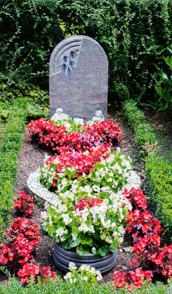 Marble tombstone and grave in an old cemetery. Flowers and grave in an old cemetery Angels Burial Cemetery Chapel Church Cross Grave Memorial Crematory Crypt Dead Deadly Floral Wreath Flowers Flowers Arrangement Funeral Grave Jewellery Grave Lamp Grave Plantation Grave Record Gravestone Marble Priest Tombstone Wreath