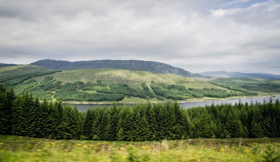 Green Meditation Nature Relaxing Scotland Trees Wildlife & Nature Beauty In Nature Cloud - Sky Forest Trees Forests Green Color Healthy Lifestyle Landscape Mountain Nature No People Scenics Tranquil Scene Tranquility Tree