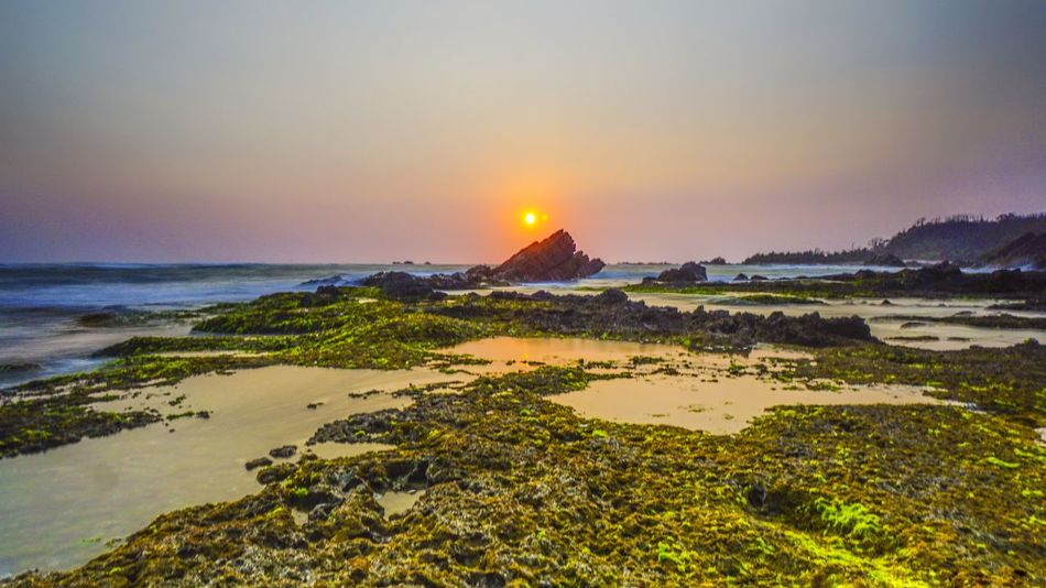 Sunset in Karang Suraga in Banten coastline Portfolio Of Arif Wibowo Photograph By Jgawibowo Portfolio Of Jgawibowo Photography By Jgawibowo Twilight Twilight View Rocky Coastline Seaweed Sunset_collection Landscape Nature Nature Green Water Sea Sunset Beach Clear Sky Panoramic Beauty Dusk Illuminated Sky Seascape Coastline Coast Algae Rugged Wave Coastal Feature Low Tide