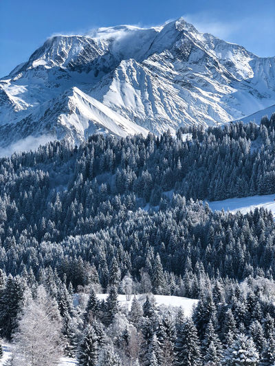 Montblanc mountain View on France skiing area Mountain Winter Snow Cold Temperature Tree Beauty In Nature Snowcapped Mountain Mountain Peak Forest Skiing Snowboarding Montblanc France Saint Gervais Weekend Activities Blue Alps Scenics - Nature Nature 4810m BIG Happy View