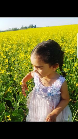 Child Childhood Flower Girls Standing Agriculture Cereal Plant Domestic Life Rural Scene Crop
