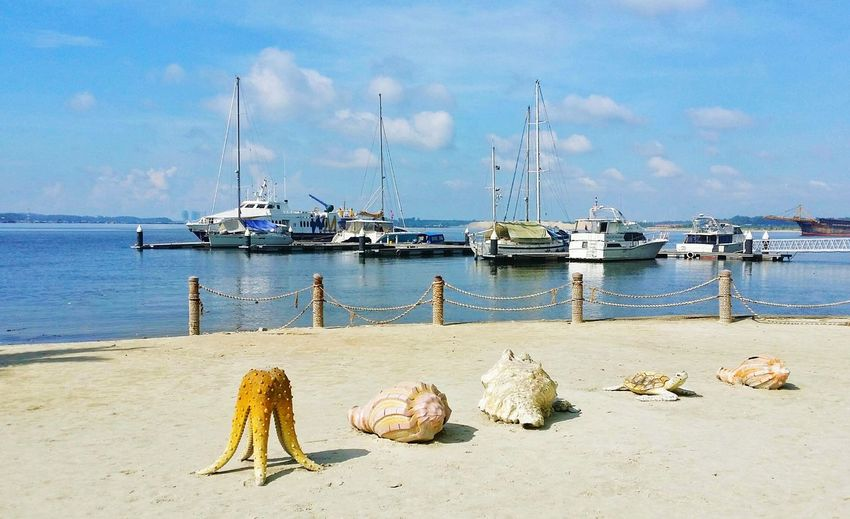 Seashells sculptures on shore by boats moored at sea