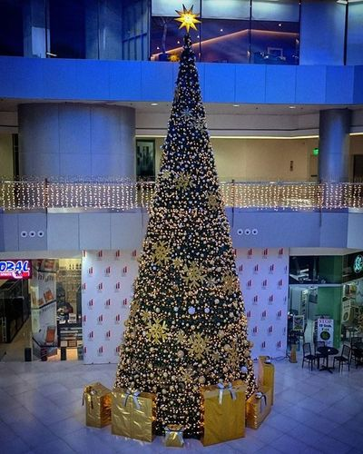 12/23/2015 Christmastree MerryChristmas