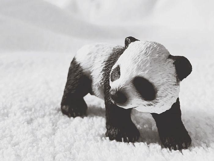 Close-up of panda figurine on rug