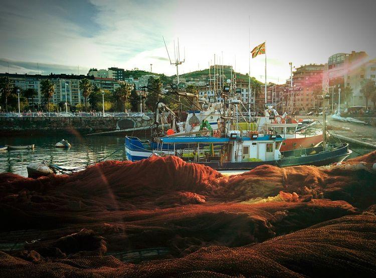 Santurtzi Santurce Puerto Pesquero Sardinas Nature Sea Life Bilbao Euskadi