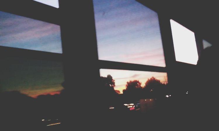 Schoolbus Sky
