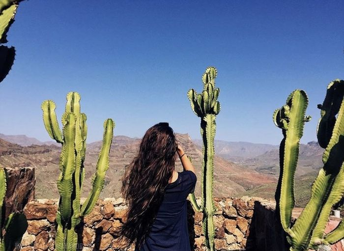 Rear view of woman standing by cactus plants against sky