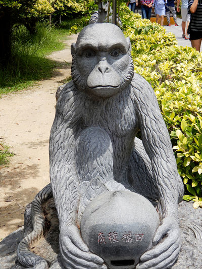 Chinese symbol monkey Animal Themes Animal Wildlife Animals In The Wild Chinese New Year Close-up Day Gorilla Mammal Monkey Monkey Symbol Nature No People Outdoors Portrait Sculpture Statue