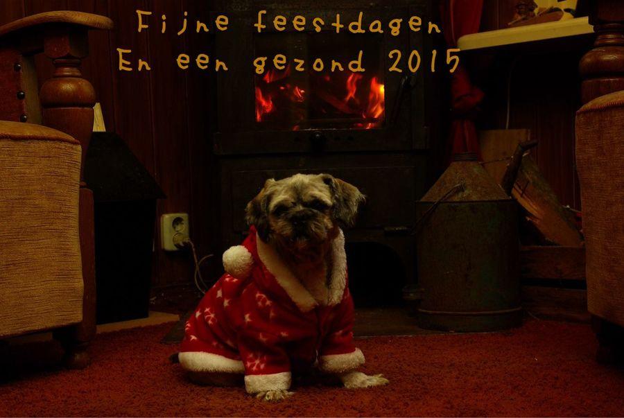 Merry xmas Xmas Holidays happy holidays Samar Cold Willem had het na het scheren koud Kerst