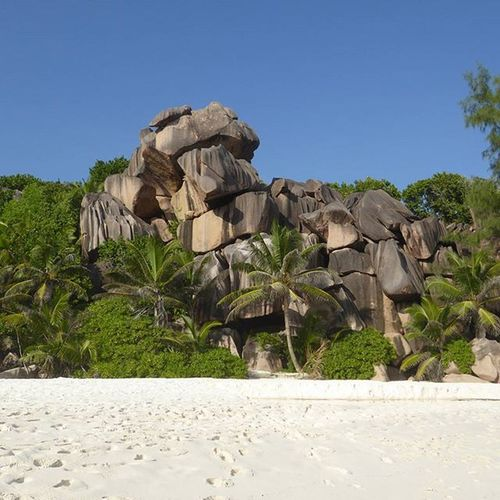 The granite boulders in the Seychelles are everywhere. Apparently they're the hardest granite in the world and are a relic from when the Seychelles was part of the Indian subcontinent. Ladigue Grandanse Petitanse Seychelles Beaches Instatravel Travelstoke