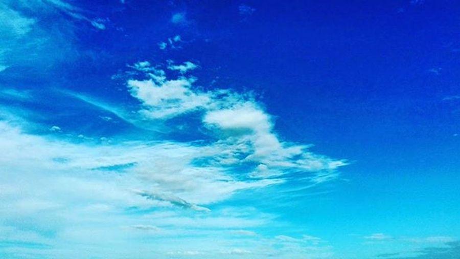 Blueskies Blue Pocket_colors Rainbowfwall Clouds Skies Sky Bluesky Sunnyday Summer Hastings 9vaga_colorblue9 Tv_simplicity Minimalgram Minimal_mood Minimal_int Minimal_nio 9vaga_letters9 Tvc_r2d2
