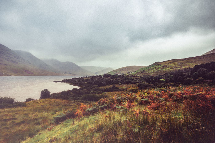 Awe Beauty In Nature Cloud - Sky Connemara National Park Day Gloomy Day Grass Idyllic Ireland Landscape Moor  Moorland Mountain Nature No People Outdoors Scenics Sky Sky And Clouds Tranquil Scene Tree Water Wilderness Area