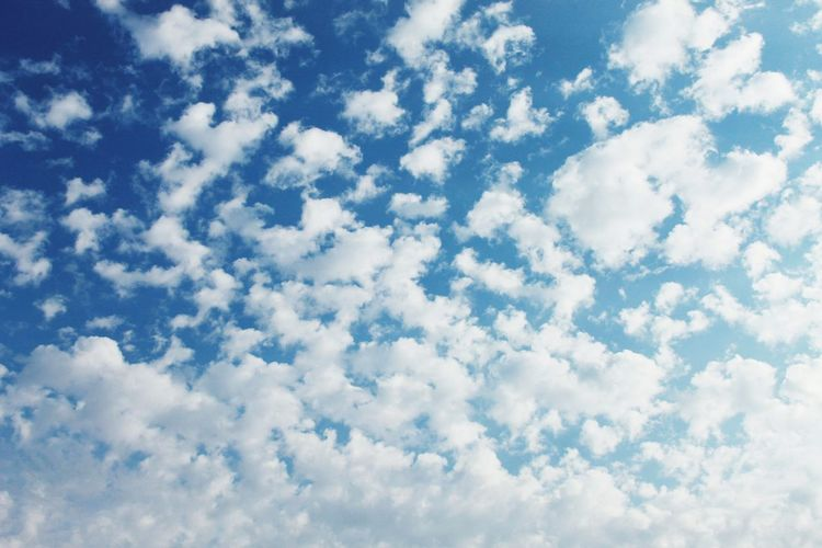 Cloud - Sky Sky Beauty In Nature Tranquility Nature Scenics - Nature Day Environment White Color Fluffy Full Frame Idyllic Backgrounds Cloudscape Low Angle View Tranquil Scene Meteorology No People Blue Outdoors