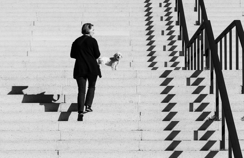 Rear view of woman with dog walking on staircase in city