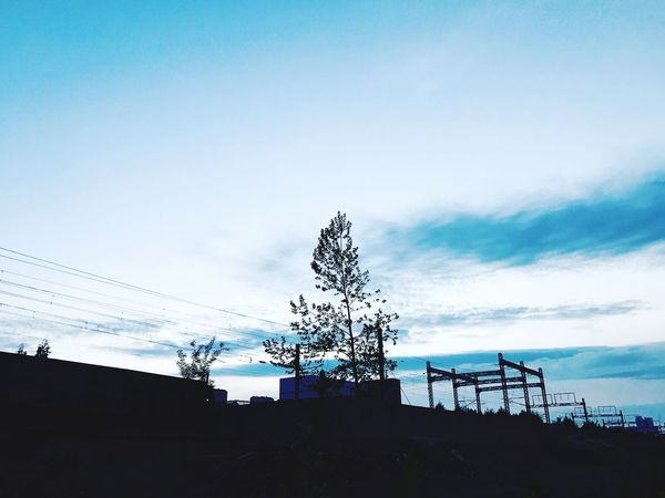 Sky Connection Day Cloud - Sky Low Angle View Silhouette Tree Nature Outdoors Technology No People Ansan Sunset Subway Station