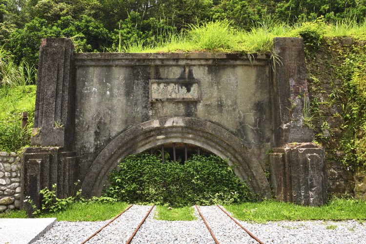 Mine entrance Remains Ruins Arch Architecture Built Structure Day Entrance Grass Green Color Growth Hedge History Mining Mining Area Nature No People Old Outdoors Park Park - Man Made Space Pit Plant Solid The Past Tree