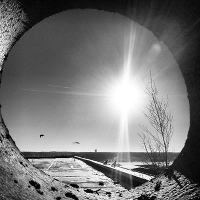 Life in a tunnel... Dannemora Sky Beautiful Sun amazing sunset sunriseindustrie bird bw