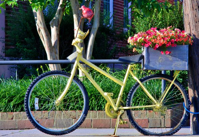 unique eclectic bike and flowers Basket Close Up Creative Cycle Day Eclectic Flower Fun Image Of Land Vehicle Leaning Mode Of Transport No People Outdoors Parked Parking Pcture Of Photo Of Plant Stationary Sunny Day Tree Unique Wheel Yellow