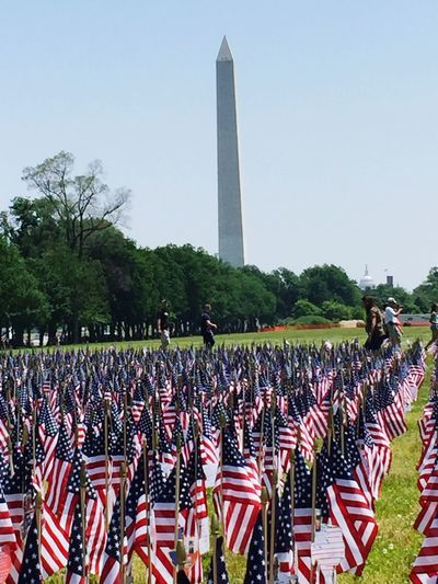 Memorial Washington, D. C. Remember Flags The Photojournalist - 2016 EyeEm Awards