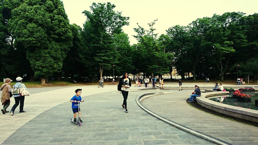 Day People Holiday Tokyo Japan Ueno Tokyo AndroidPhotography Smartphonephotography Uenopark Nice Day Nice Place Child Children Playing