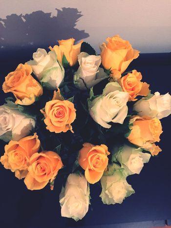 Flowers Roses Easter Påsk