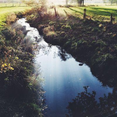 FLOWING Nature Autumn Landscape River