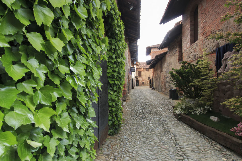 Candelo, Biella - May 4, 2016: View form the inside of the Medieval village of Ricetto di Candelo in Piedmont, used as a refuge in times of attack during the Middle Age. Alley Architecture Biella Built Structure Candelo Candelo In Fiore Day Diminishing Perspective Footpath Green Green Color Growth Italy Long Medieval Village Narrow Nature No People Outdoors Pathway Plant Ricetto Di Candelo  The Way Forward Vanishing Point Walkway