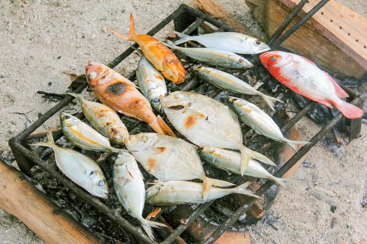 Grilling Fresh Fish on Samal Island Beach, Davao Del Norte, Philippines Grilled Fish Fish Fresh Fish Fresh Food Grilling And Chilling Samal Island Samal Island, Philippines Beach Beach Holiday Filipino FilipinoStreetPhotographers Filipino Food